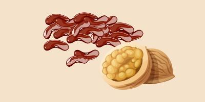 квасоля та волоські горіхи