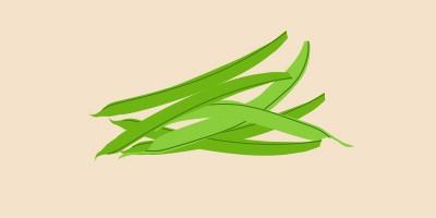 квасоля зелена, стручкова, спаржева, цукрова або французька